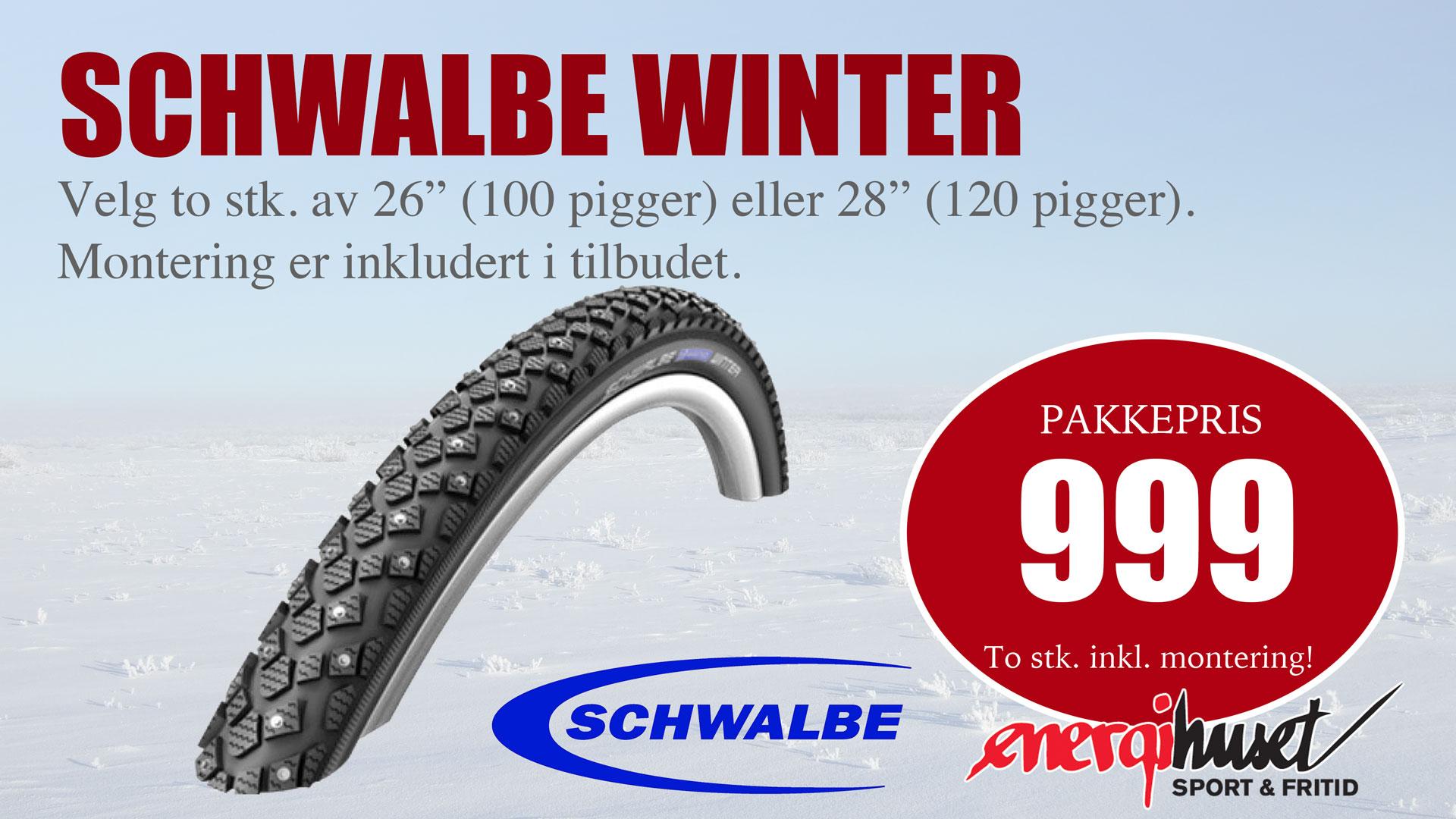 skjerm_Schwalbe-winter